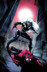 Black Cat vs SpiderMan by LucianoVecchio