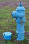 Fire Hydrant located outside the Cornish Pumping a by Crigger