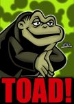 Cartoon Villains - 066 - Toad! by CreedStonegate