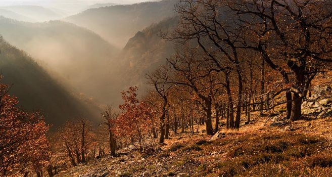 Fog Boiling up by alban-expressed