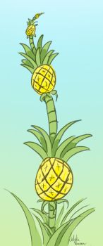 That's how pineapples grow. by Jellyka