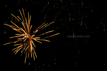 Happy New Years +2011-2012+ by Cesia