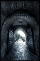 Mysteries door by zardo