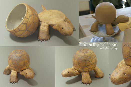 Tortoise Cup and Saucer by ravenclawyoshi