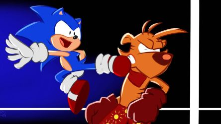 Sonic vs Ty, or DYNAMIC ENTRY by KairiTheValeyard