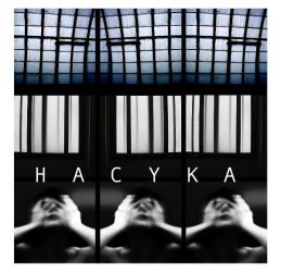 HACYKA book by partiallyHere