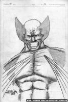Wolverine pin-up by CZR31