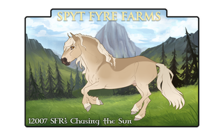 12007 SFR's Chasing the Sun by SpytFyre-Ranch