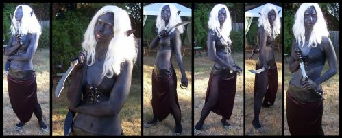 Drow Collage by Pointy-Eared-Fiend