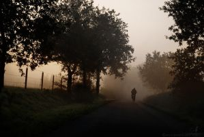 foggy autumn by Suvelis