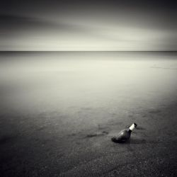 No Message In The Bottle by DenisOlivier