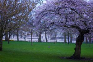 Springtime in London by WA-k