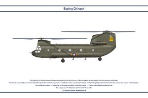 Chinook South Vietnam 1 by WS-Clave