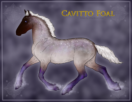 Cavitto Foal ID 1239 by ReQuay