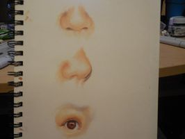 Realistic copic paractice by imagine-art-21614