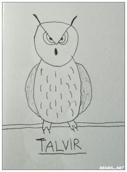 A Very Basic Owl Drawing by regnoart