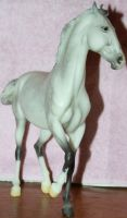 Breyer - Rajah 2 of 5 Stock~ Marwari Horse by Lovely-DreamCatcher