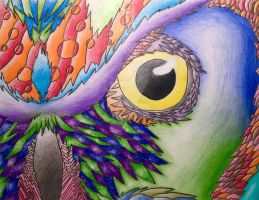 An Owls Eye by 2Cartoon-Cats