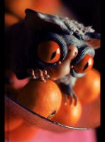 Justas and tangerines by cottongrey