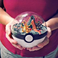 Poke Ball Terrarium - Charizard - Large by TheVintageRealm