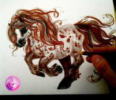Appaloosa Marker Sketch by crystalcookart