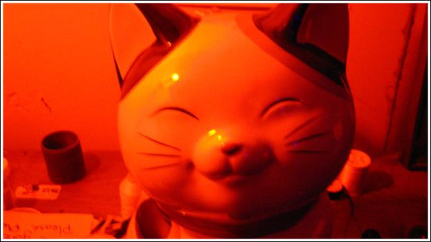 Red Kitty Bank by preciouszipster