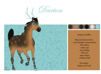 #15 Darton by casinuba