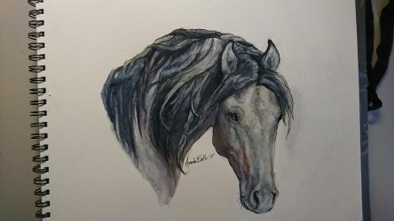 Gray mare in hard watercolors by QueenAnneka