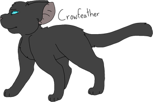 50 Crowfeather (Remake) by Icedog-McMuffin