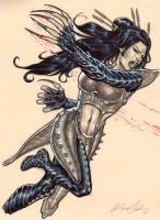 Lady Deathstrike by mrno74