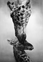 A giraffe - complete by indiart3612
