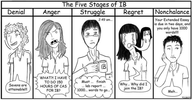 NamePending-The 5 Stages of IB by Raire