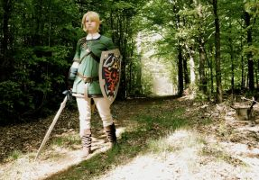 Cosplay: Going out to save Hyrule by Angels-Leaf