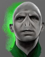 Lord Voldemort by JuliaFox90