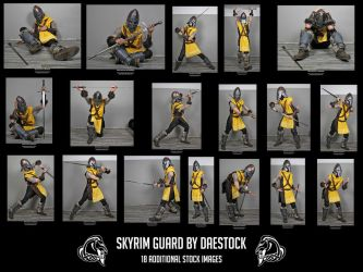 Skyrim Guard unedited by DaeStock