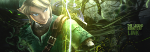 The Legend Born To Be Link by GreenMotion