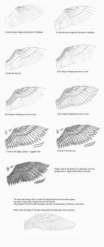How to draw wings by Serio555
