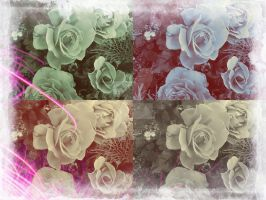 Roses Edit 18 by blackroselover