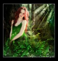 Ce'Nedra the Dryad by khisanth
