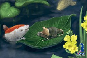 Meet the Fish by jotter