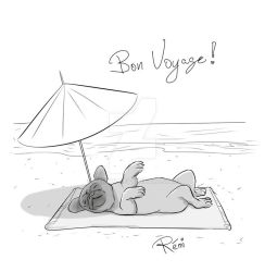 Pug on the beach by remqc
