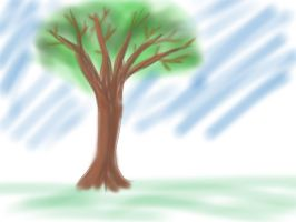 SKETCH A TREE by schultk