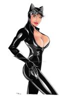 Catwoman Bust Color Revised by ESO2001