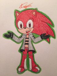 :REQUEST for Sonicbran23: by Se0kmiyee