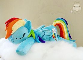 Brand New Sleeping Rainbow Dash Plushie! BronyCon by JanellesPlushies