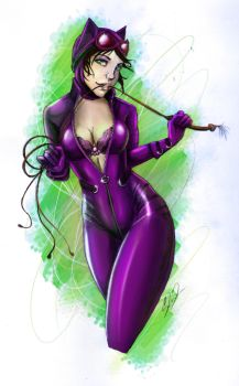 Catwoman Colored Daily Drawing by steevinlove