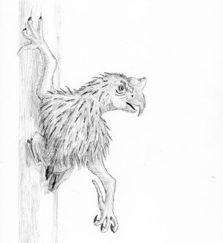 Inktober Day 15 Mysterious: Arboreal Azhdarchid by IllustratedMenagerie