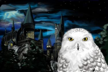 Hedwig With Background by SugarHappy