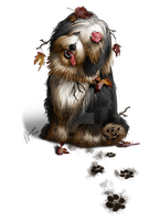 Bearded Collie - Commission by ceres86