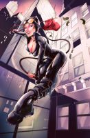Catwoman Color by kcspaghetti